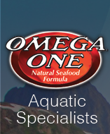 omegaone-logo.png