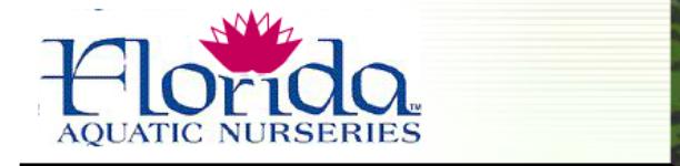 florida-aquatics-logo.png