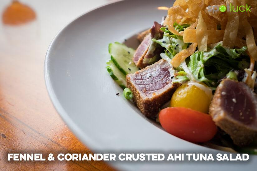 boulevard-woodgrill-fennel-coriander-crusted-ahi-tuna-salad-spotluck