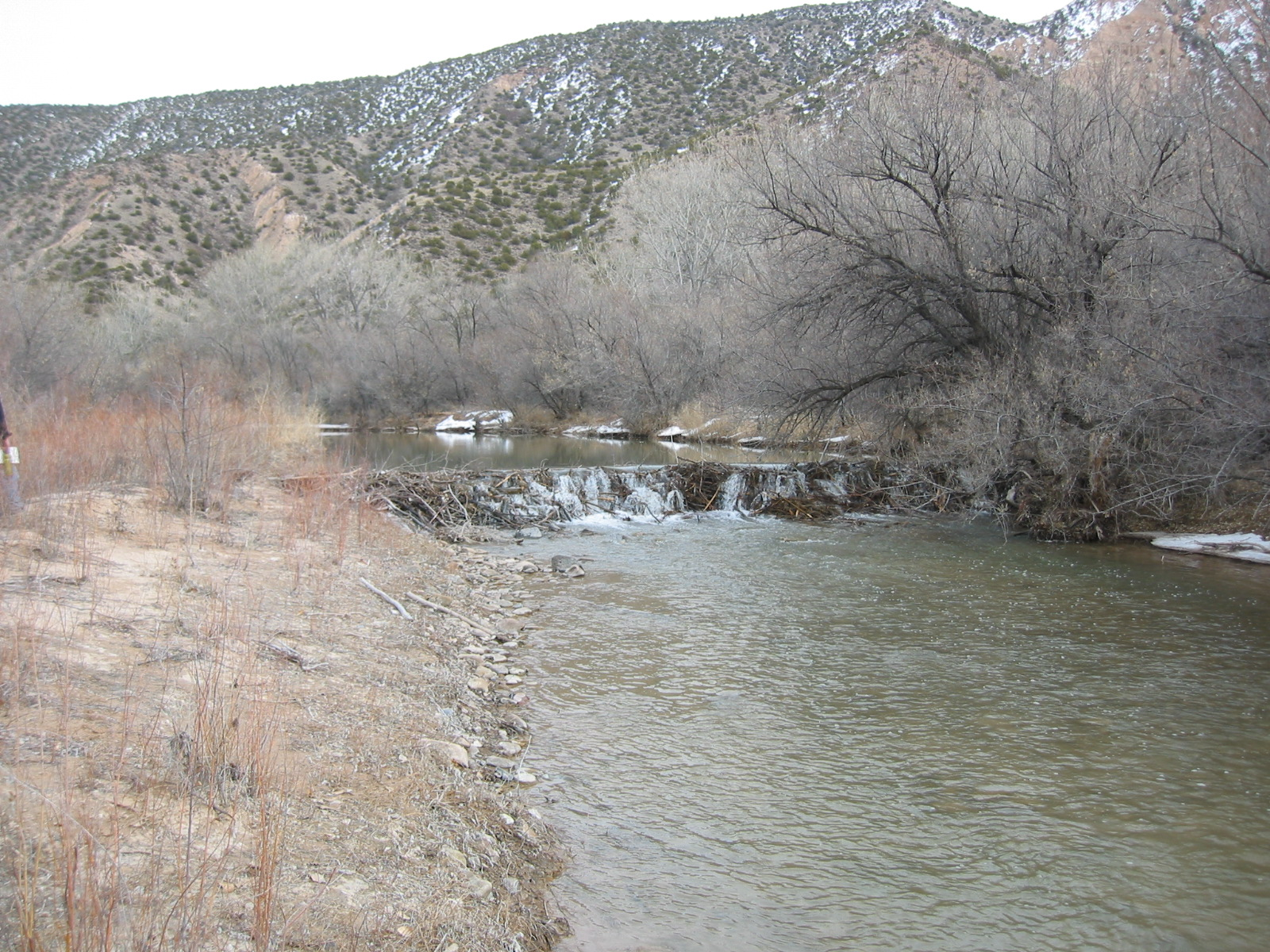 Winter on the Rio Ojo Caliente, New Mexico. A very large beaver dam across the river. Note that water continues to flow through and over the beaver dam, but a stair-step like structure has been created. We can construct a weir or check dam, or we can let beaver do it for free.
