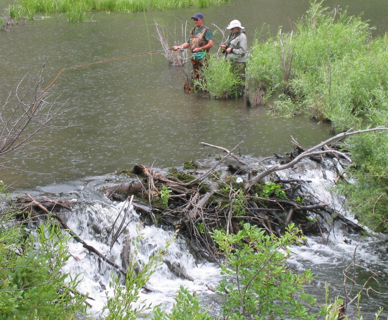 Fishermen in beaver pond, Cimarron Canyon NM