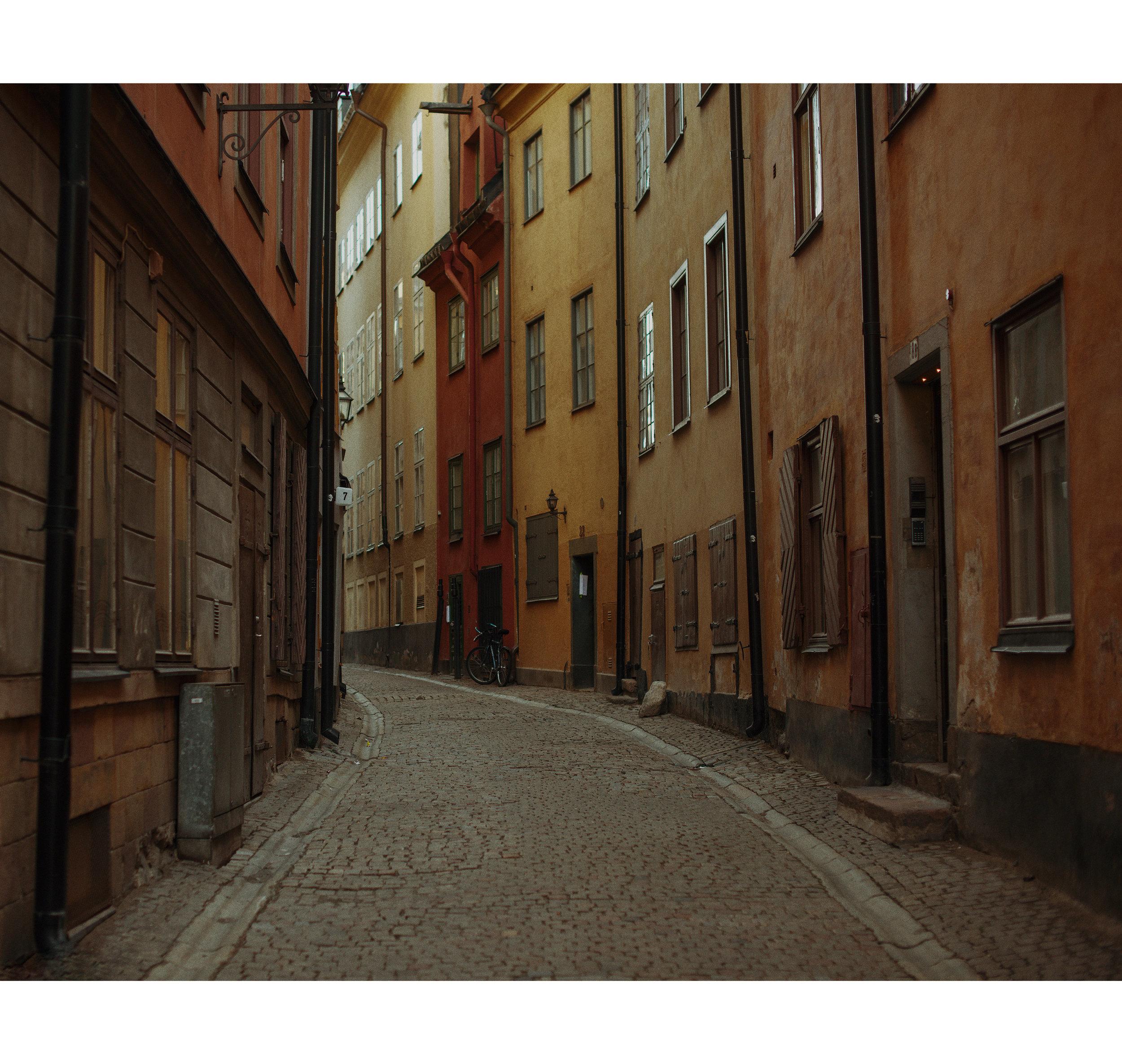 LucWilsonStockholm.jpg