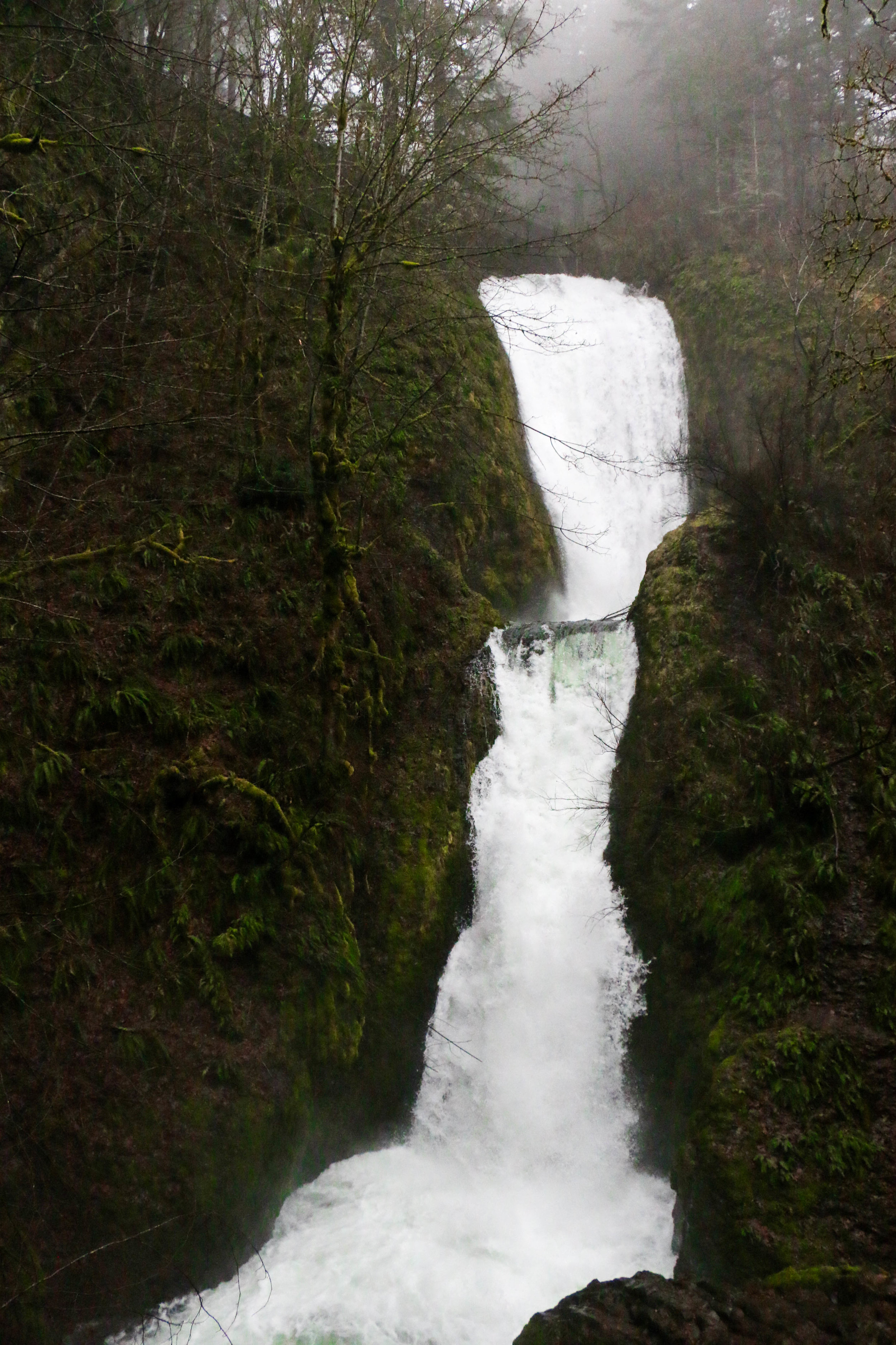 Oregon-13.jpg