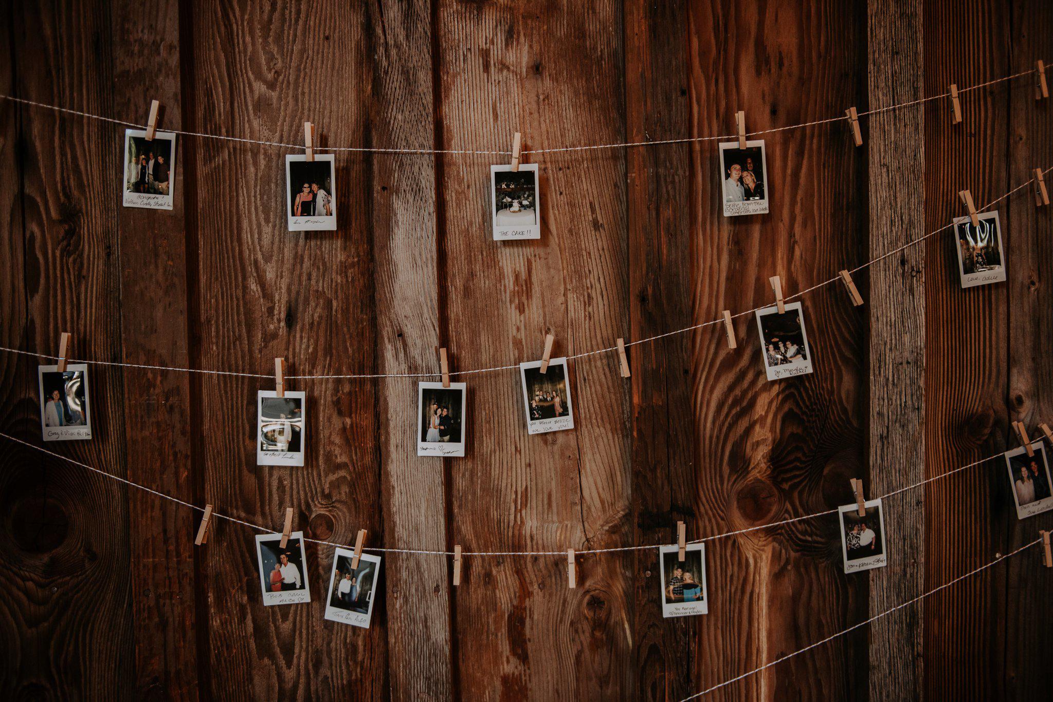 kristen-and-cody-the-kelley-farm-wedding-seattle-photographer-caitlyn-nikula-75.jpg