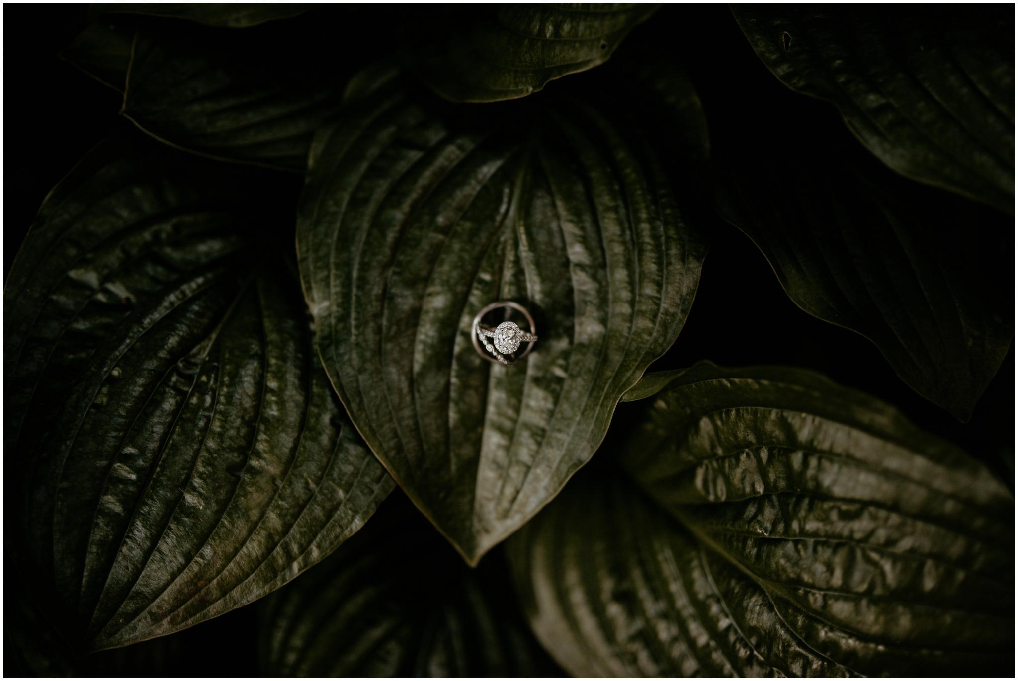 erin-and-tyler-evergreen-gardens-bellingham-wedding-photographer-163.jpg