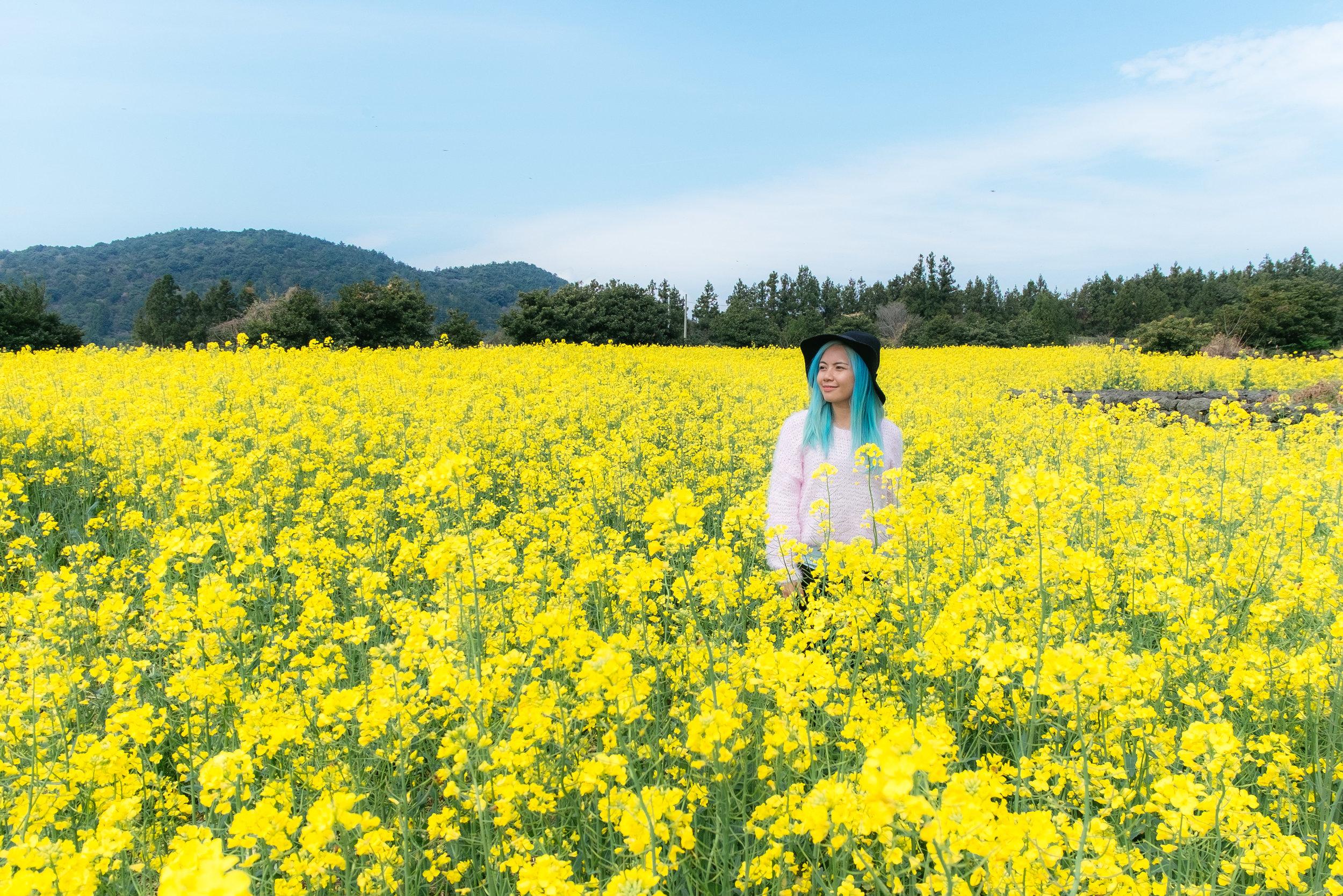 Jeju-Island-02.jpg