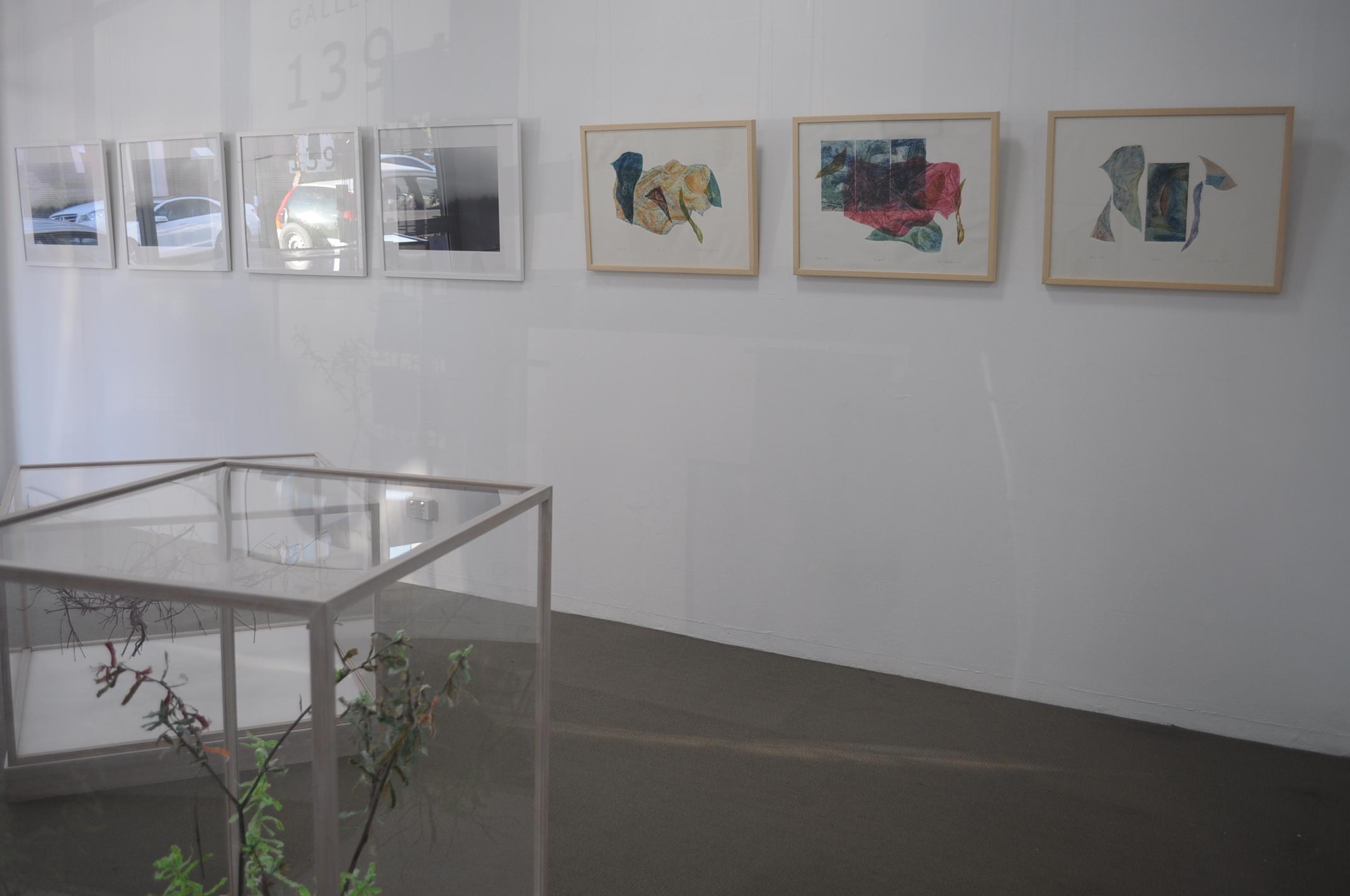 installation view (Chris Byrnes-photography, Anne McLaughlin-printmaking, Rieteka Geursen-paper sculpture)
