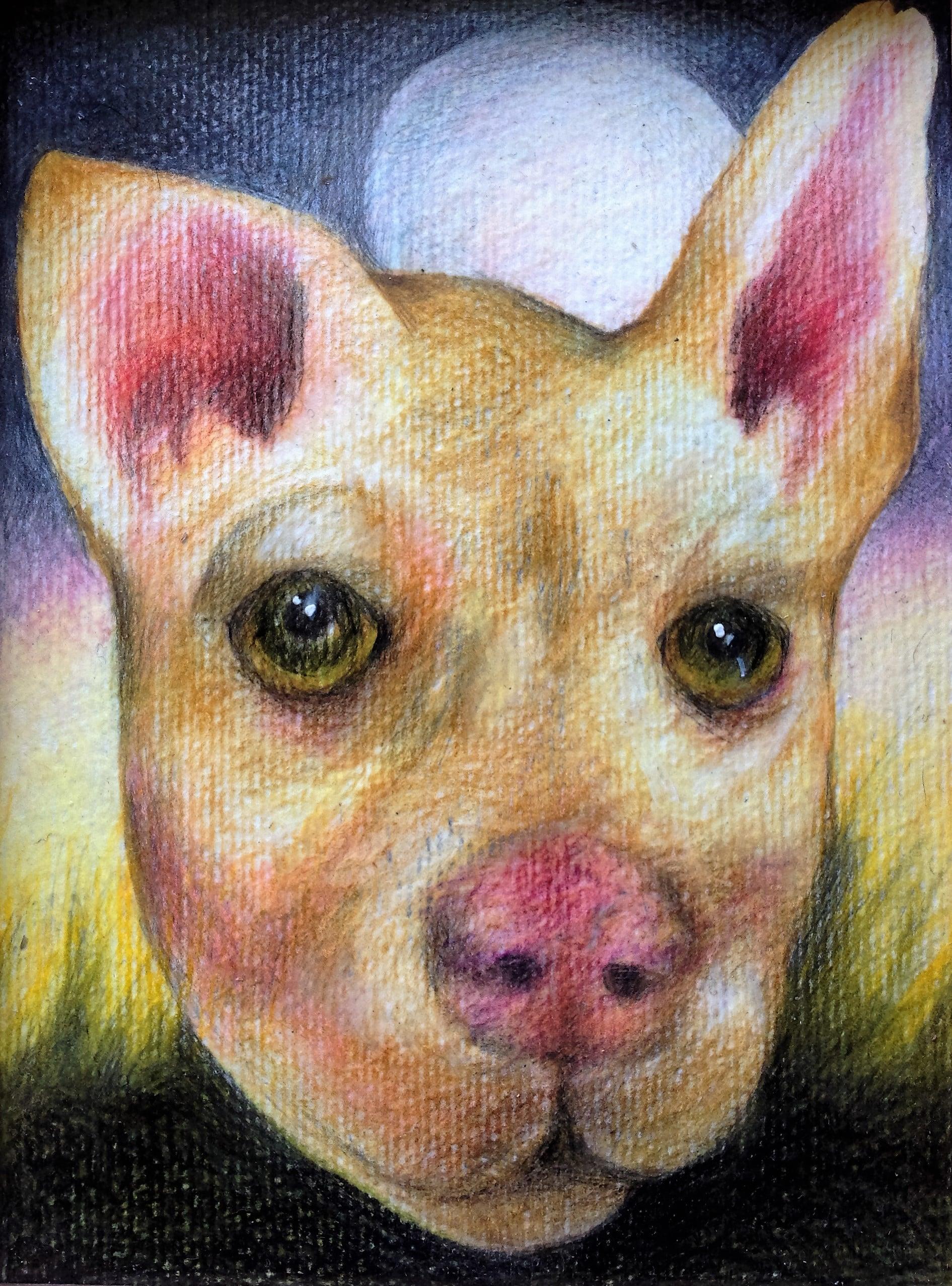 Susan Ryman_Doggy 4.JPG
