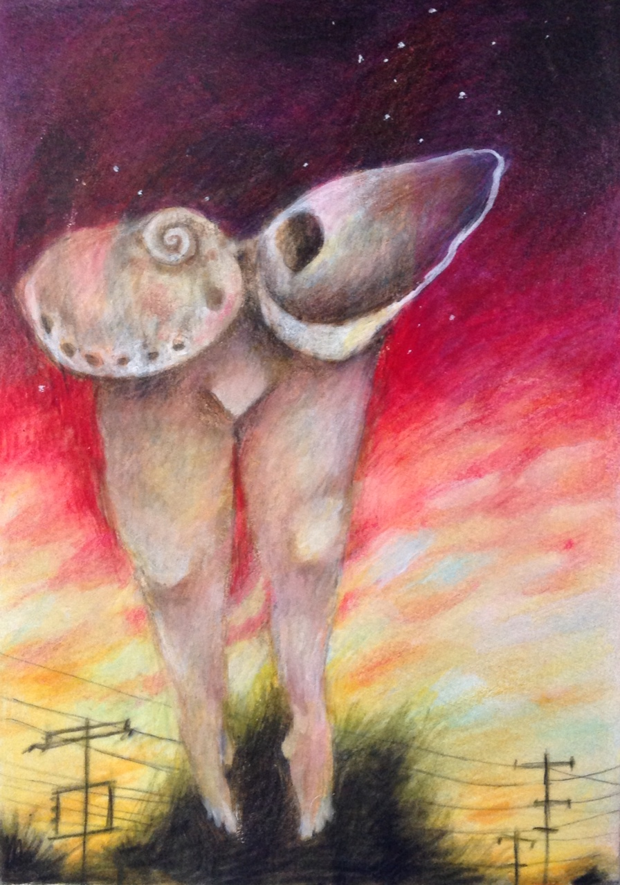 Susan Ryman_Fine Drawing2.jpg