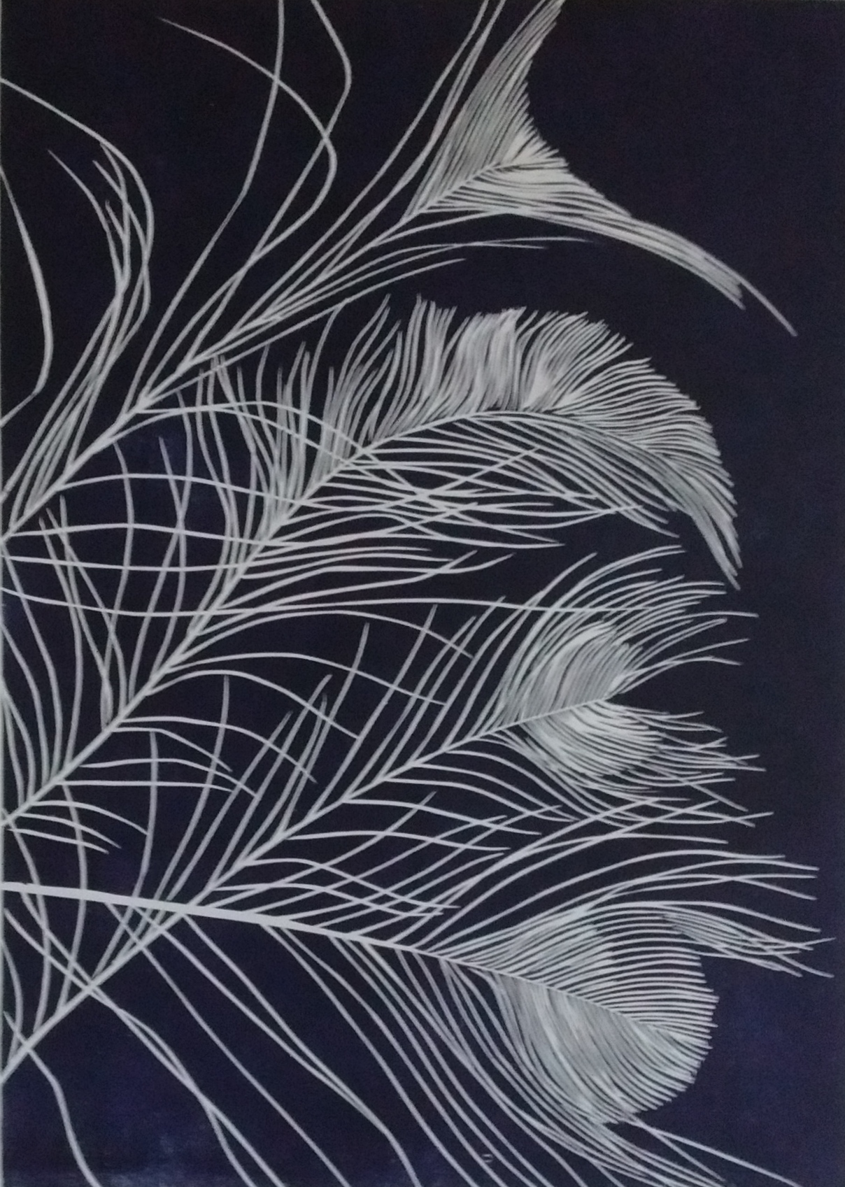 Terri Brander_ For Flight or Fancy 42 cm x 30 cm (image only) Woodcut.jpg