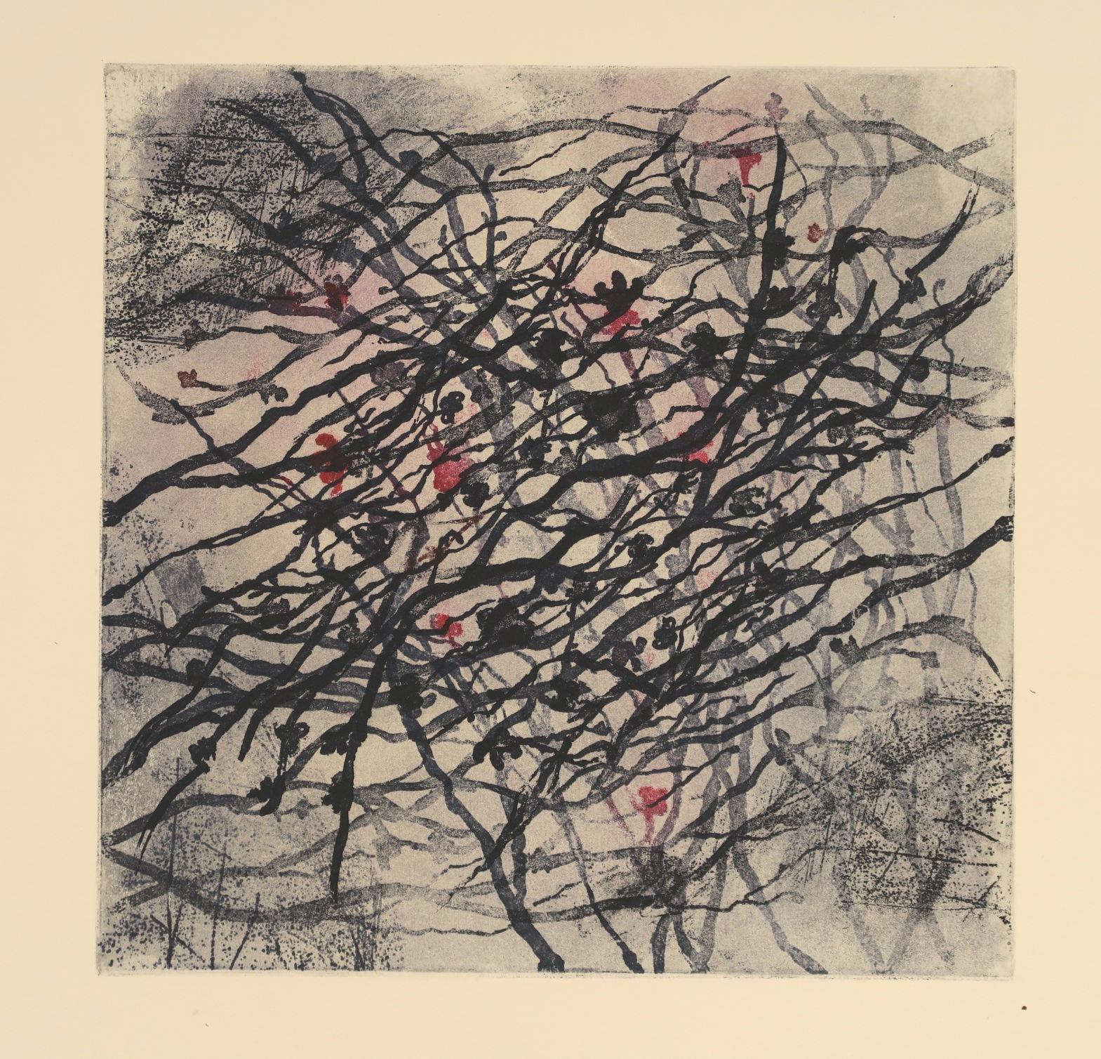Blind Woman's Garden II_Gina McDonald_etching.JPG