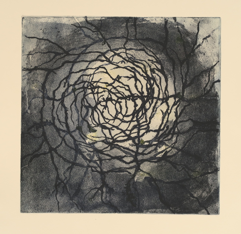 Blind Woman's Garden III_Gina McDonald_etching.JPG