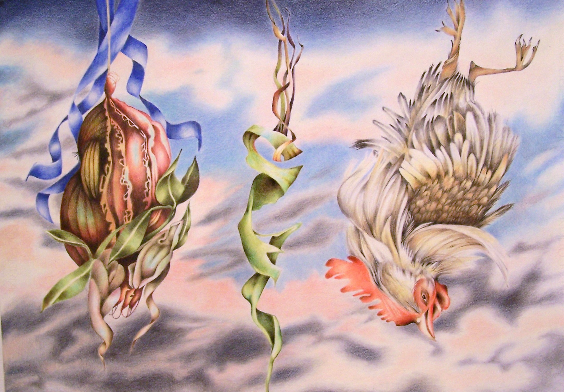 Hanging in the Balance2009 coloured pencil on Fabriano paper, hand varnished 1: each 500 x 705mm $600 each panel  $1,500 triptych.jpg