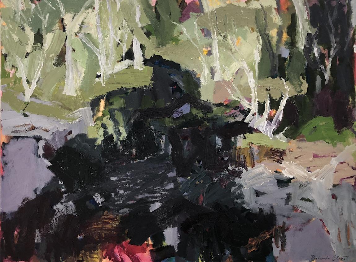 Belinda Street  In the Shadows  2018 oil on canvas 60 x 80cm  $1990.00