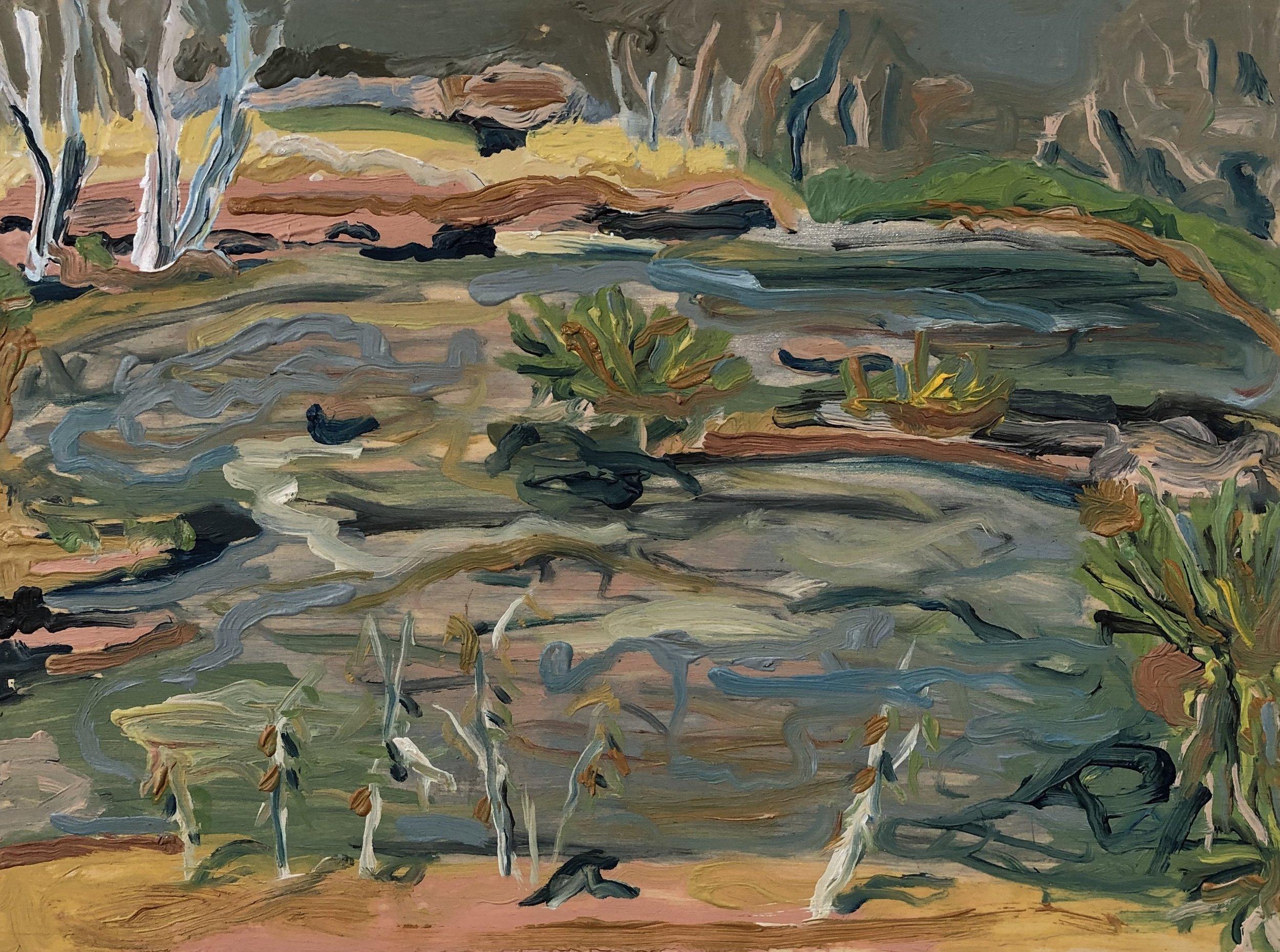 .Michelle Teear Edward Pool 2019  (En plein study at Edward River, Kimberley, WA) Oil on plywood, egg emulsion  300 x 400mm $300.00 unframed  $400.00 framed   SOLD