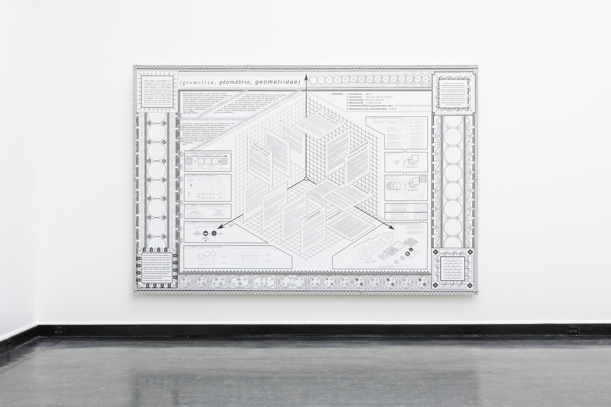 idsel Bonde,  geometria, géométrie, geometridae . Foto: Jane Sverdrupsen