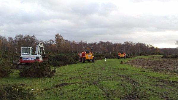 Heathland management