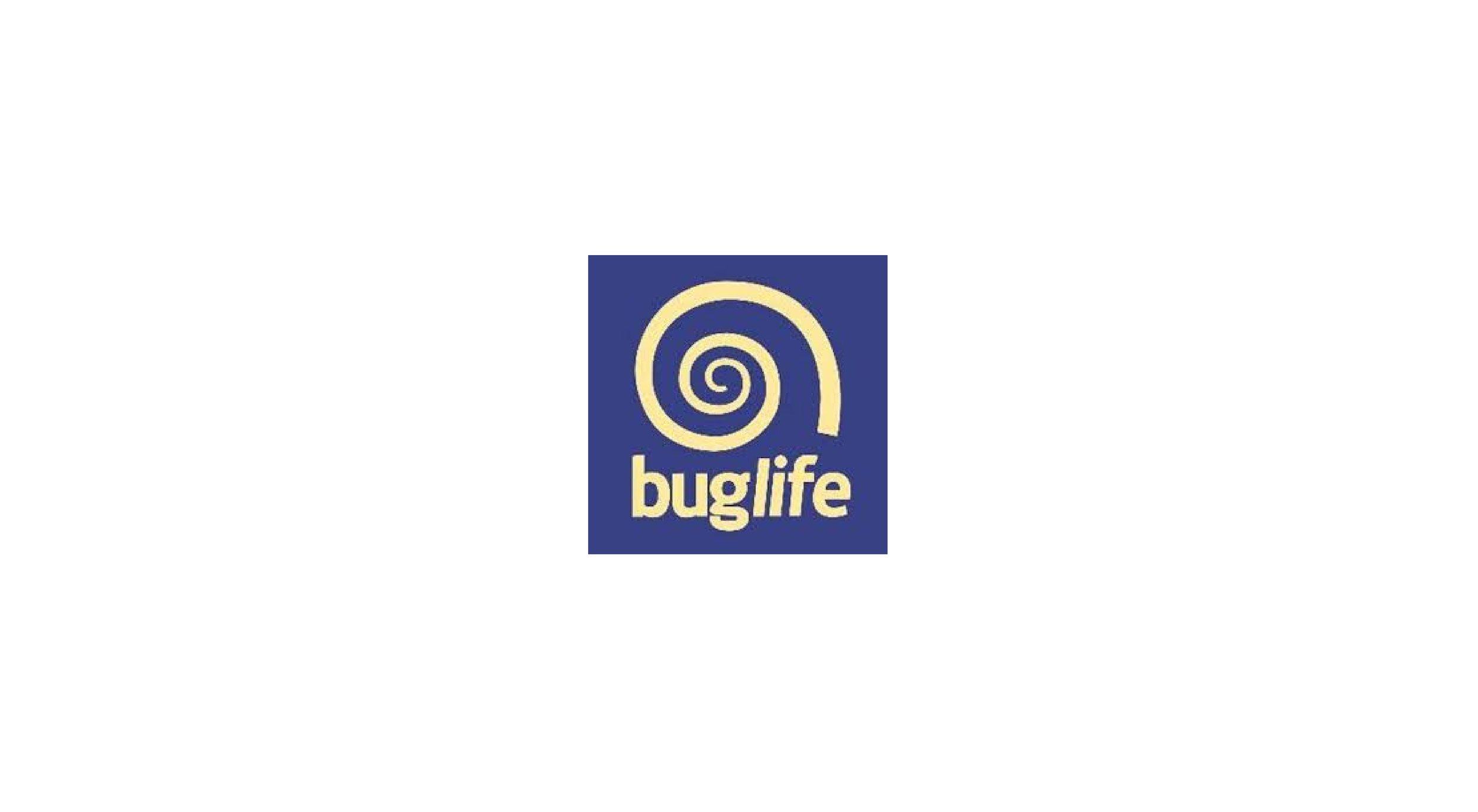 Buglife.jpg
