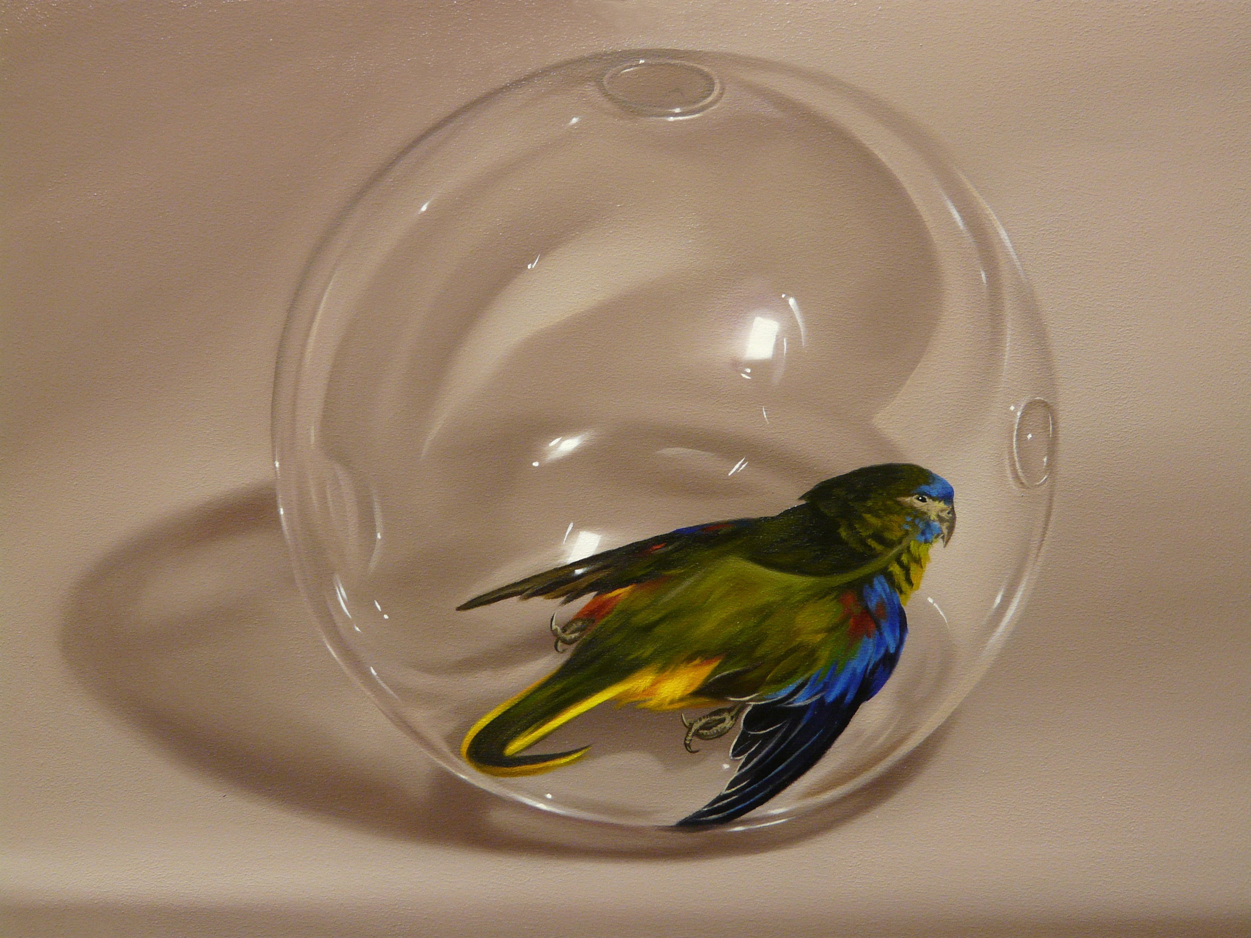 Parakeet in glass