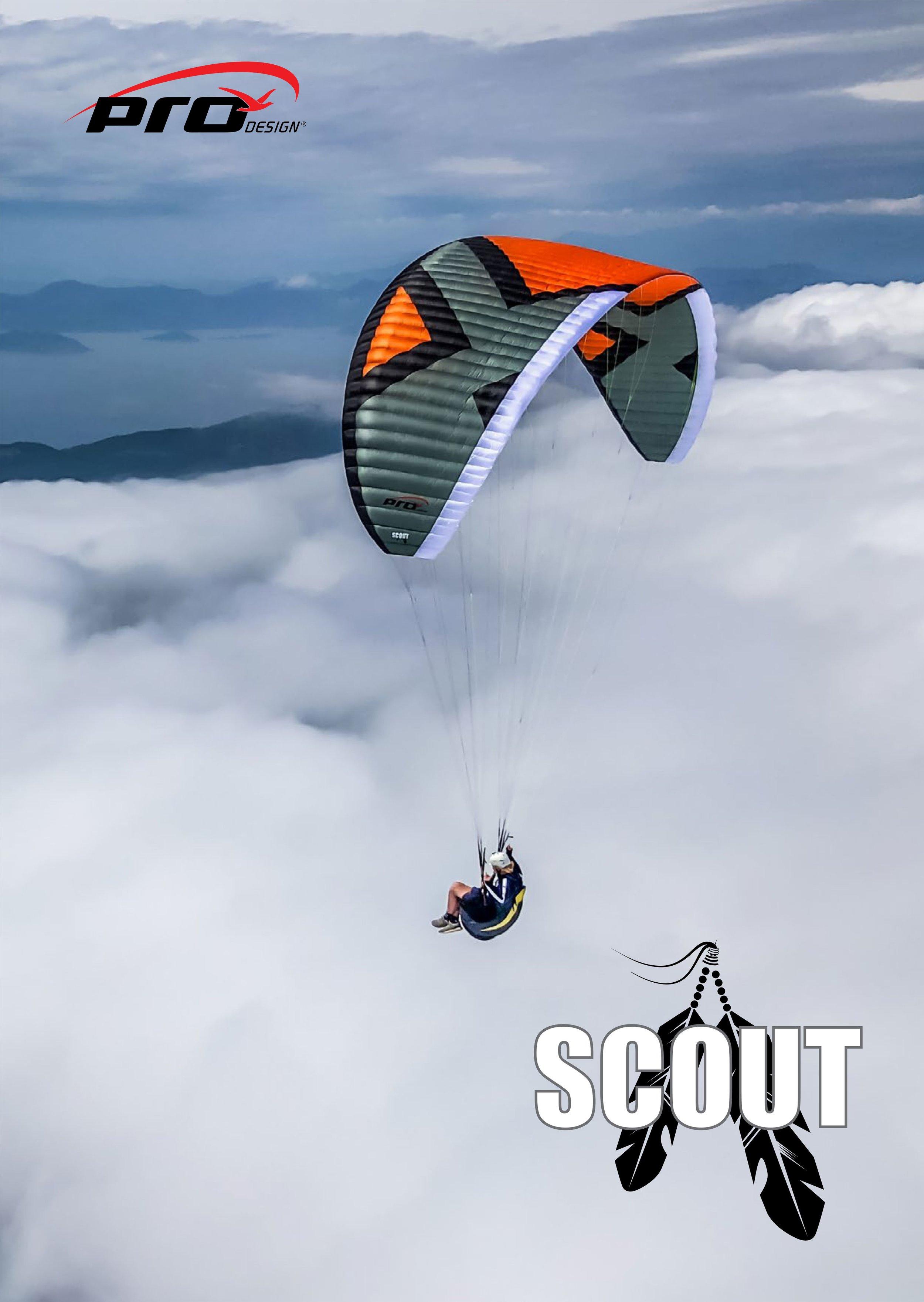 PD Scout_1.jpg