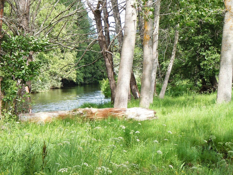 El Hotelito - río Alberche