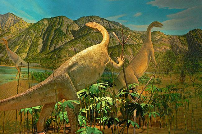 Amherst College Dinosaur Diorama