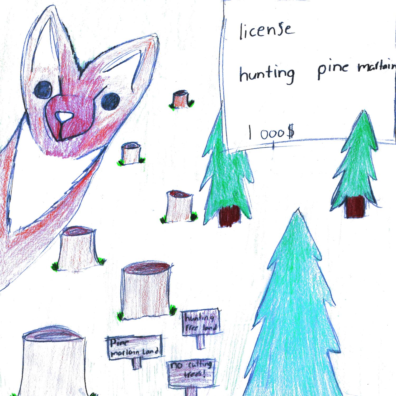 Avalon Winner -  Junior Division    Pine Marten by  Lauren Ingerman  Grade 6, Tricon Elementary