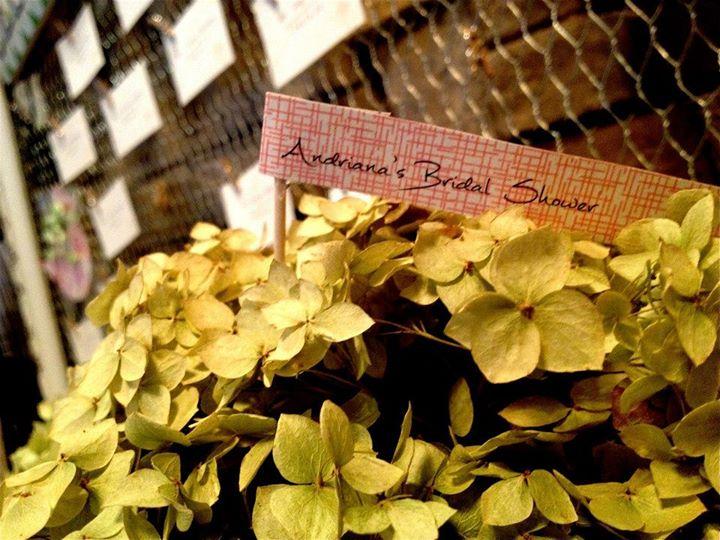 bridalshowerandriana12.jpg