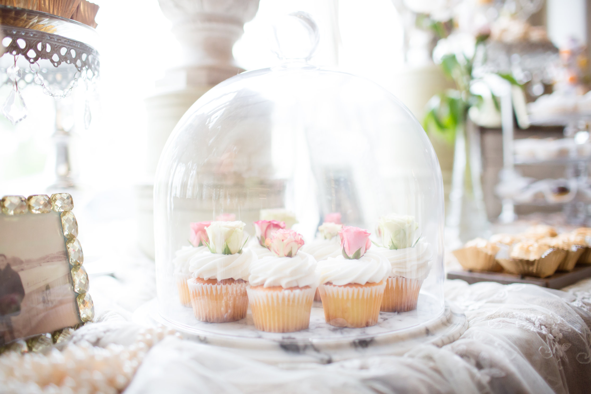 bridal-shower-kyma-roslyn-ny-beautiful-and-blessed-events-evey-003