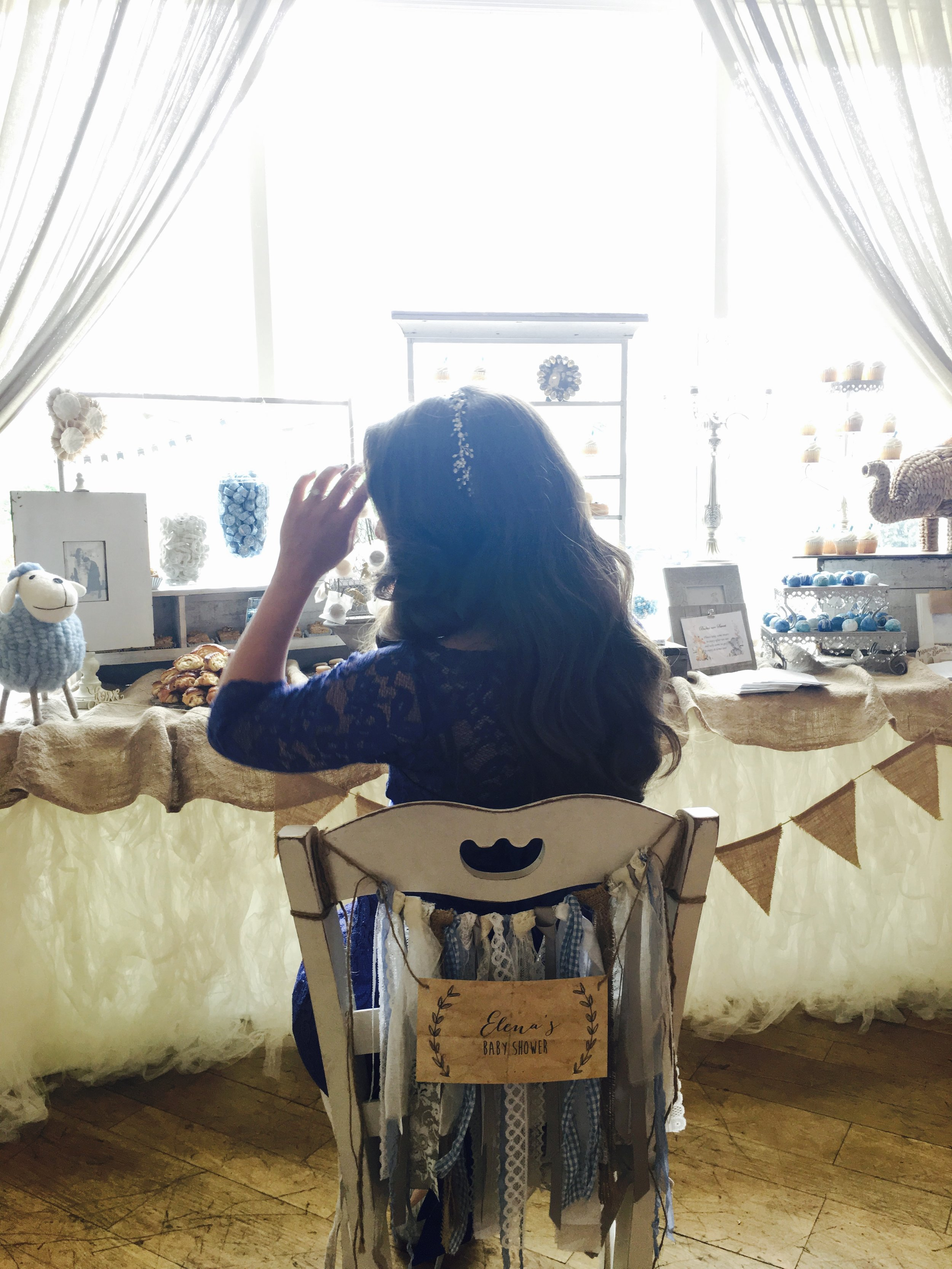 beautiful-and-blessed-events-elena-baby-shower-kyma-roslyn-new-york-004