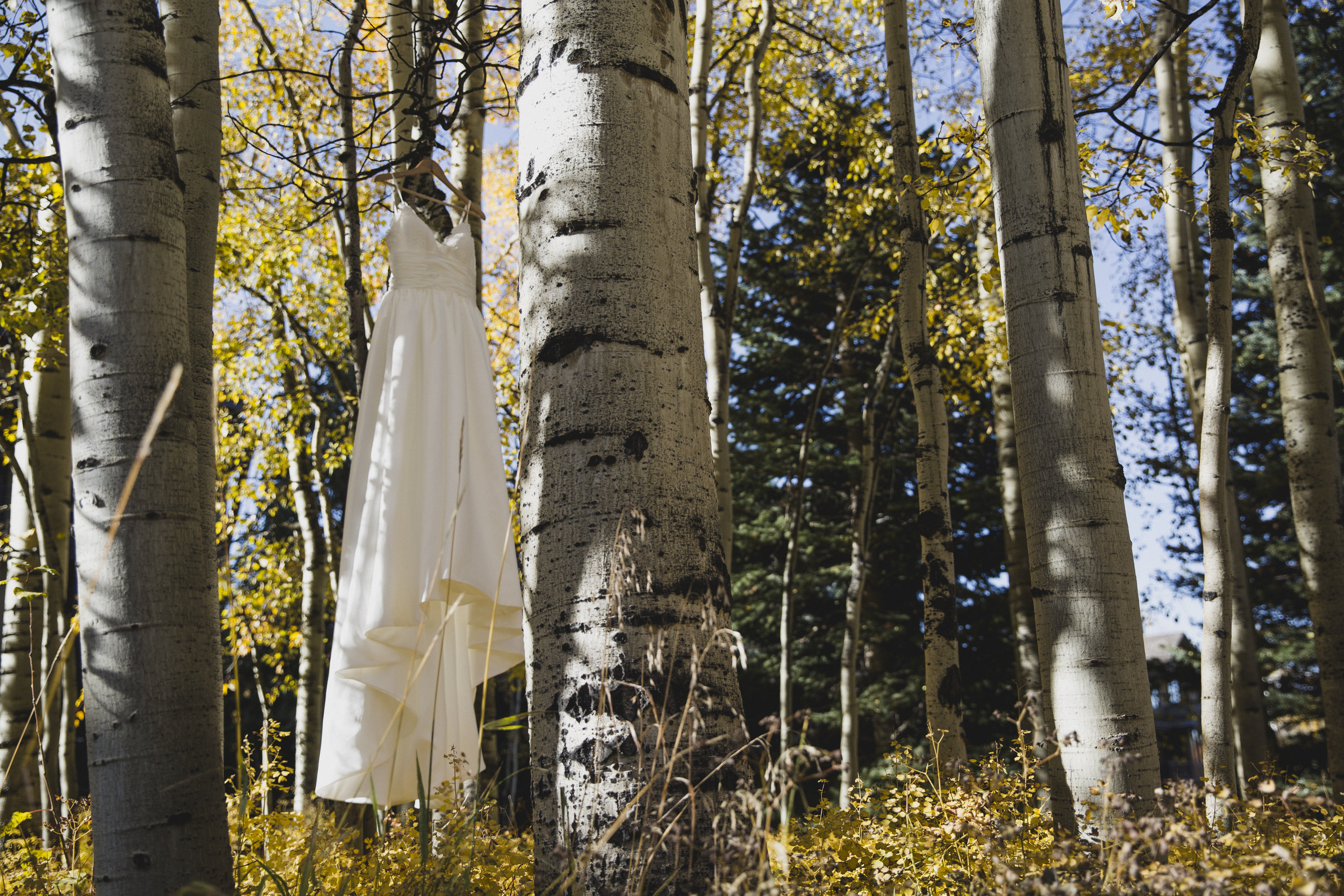 NE-LeahandAshtonphotography-Telluride-Wedding-Photography-8610.jpg