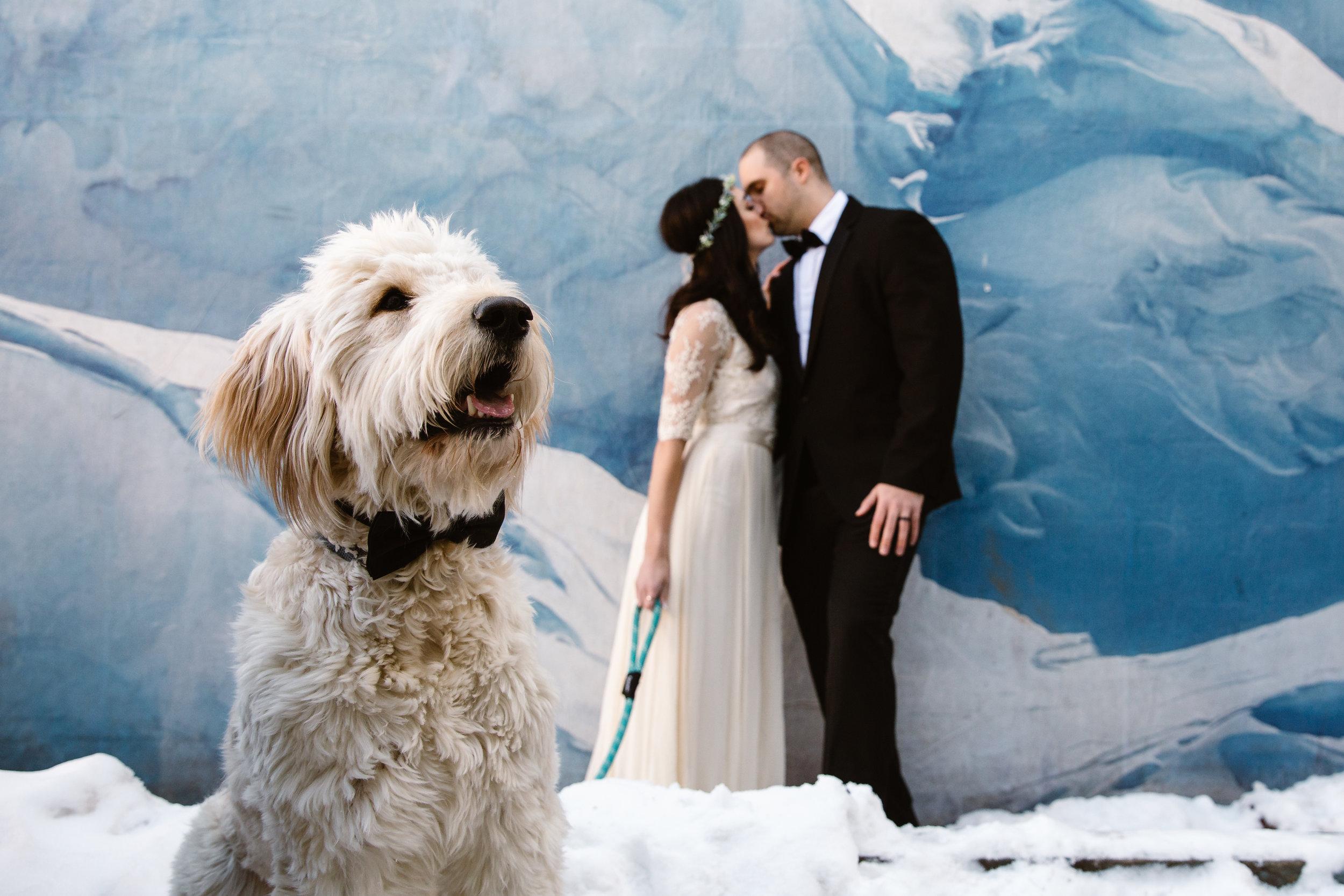 LD-Telluride-Wedding-Mountain-LeahandAshton-Photography-8.jpg