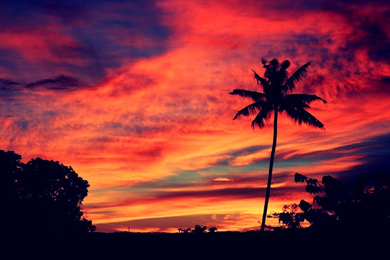 sunset red_Fotor.jpg