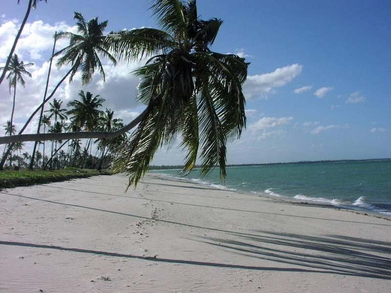 Guludo Beach 02.JPG