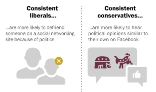 political-echo