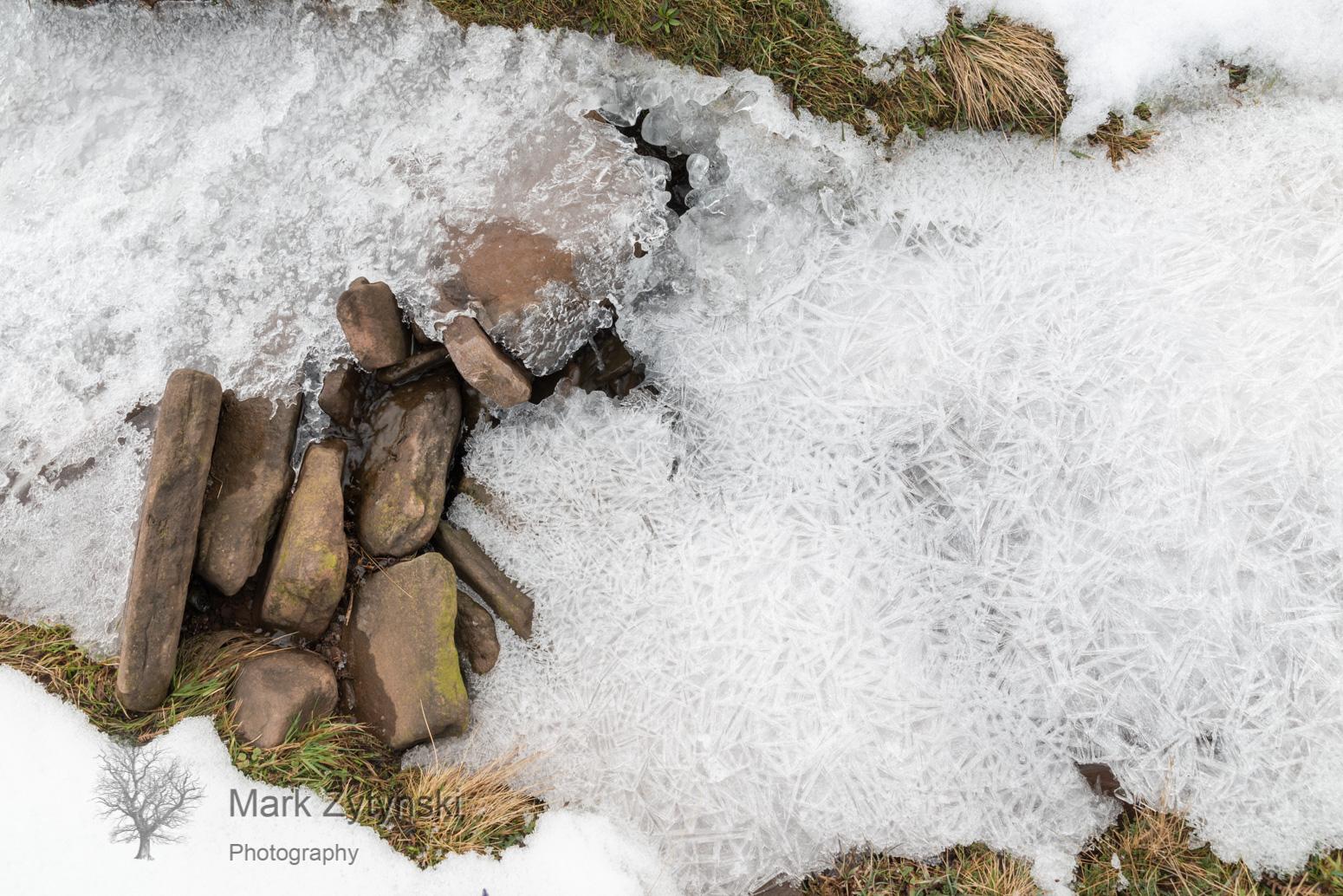 A Winter Walk Blog #5