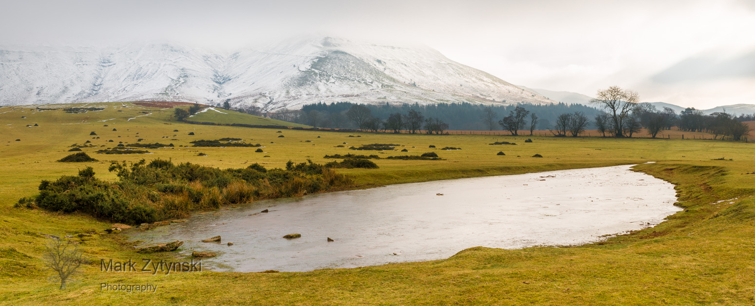 A Winter Walk Blog #7