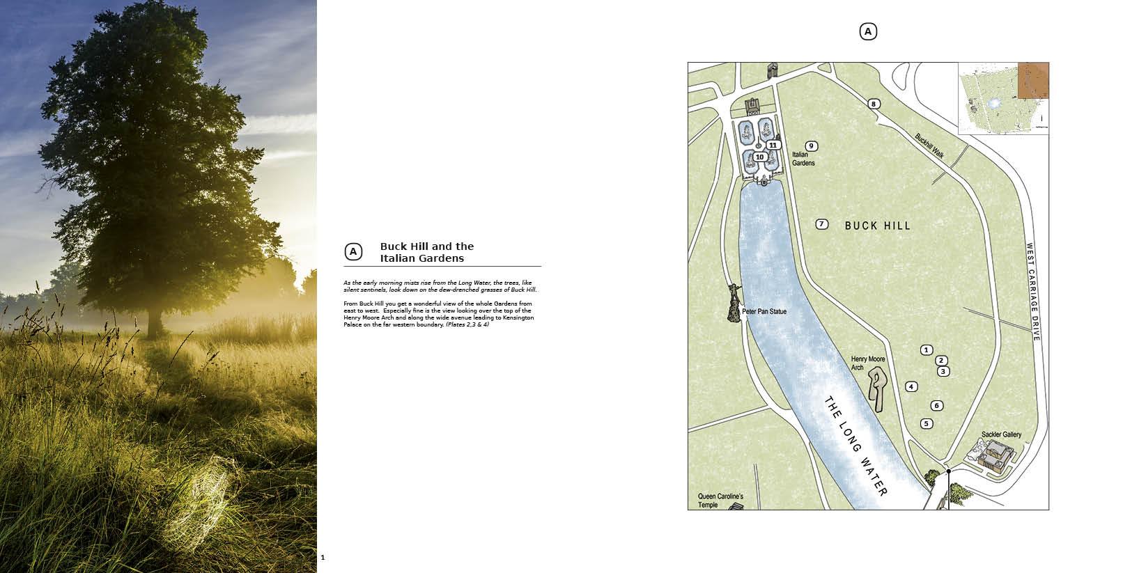 Kensington Gardens Treescapes Book