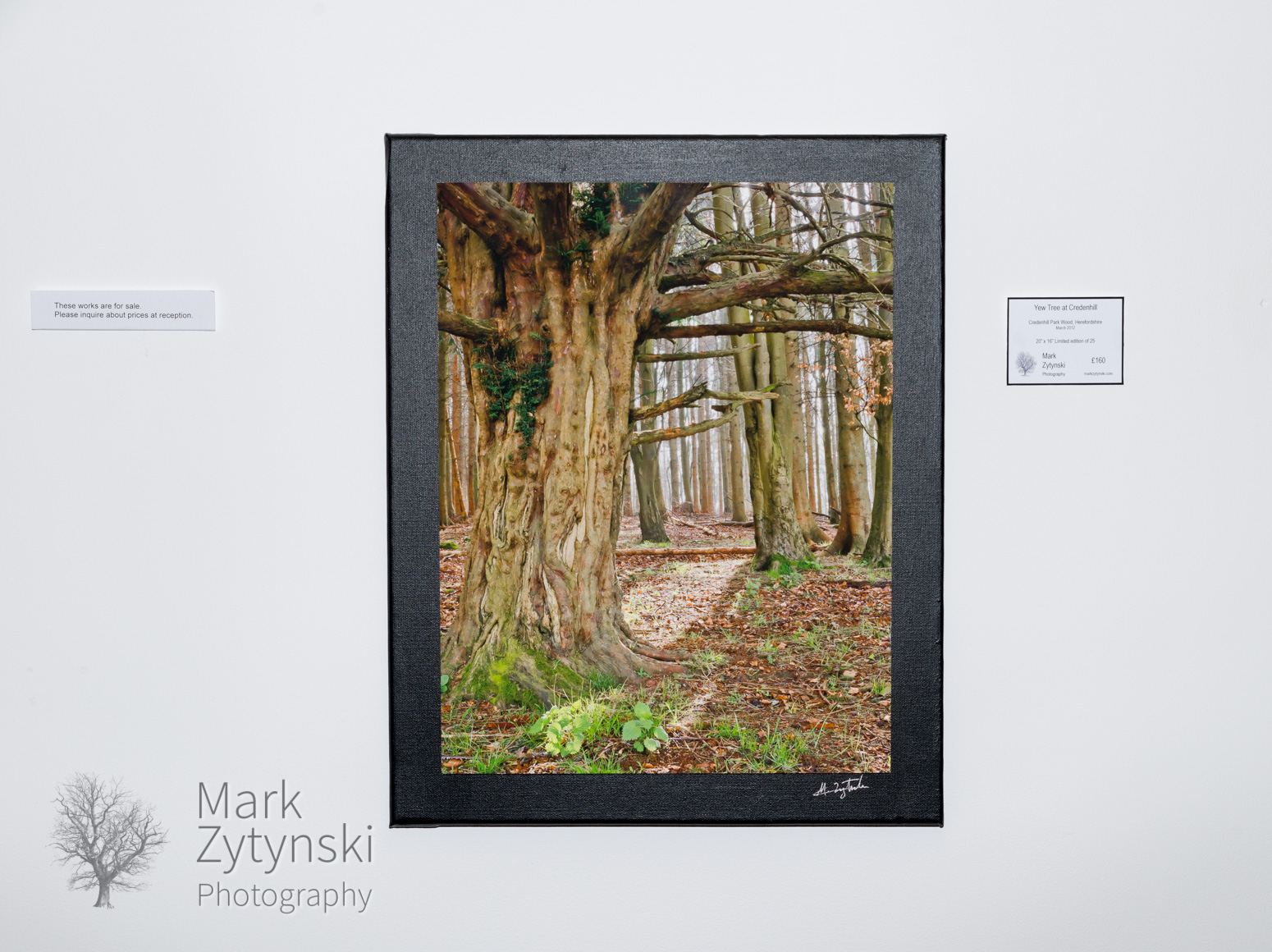 Photography exhibition cardiff business centre