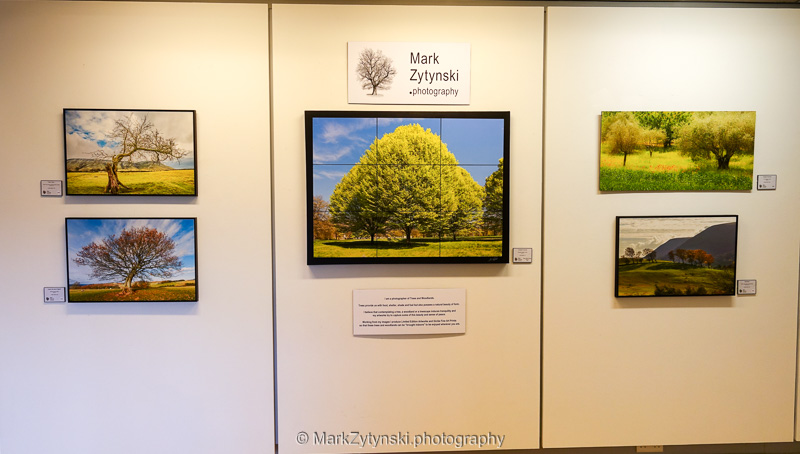 Photography exhibition wall display