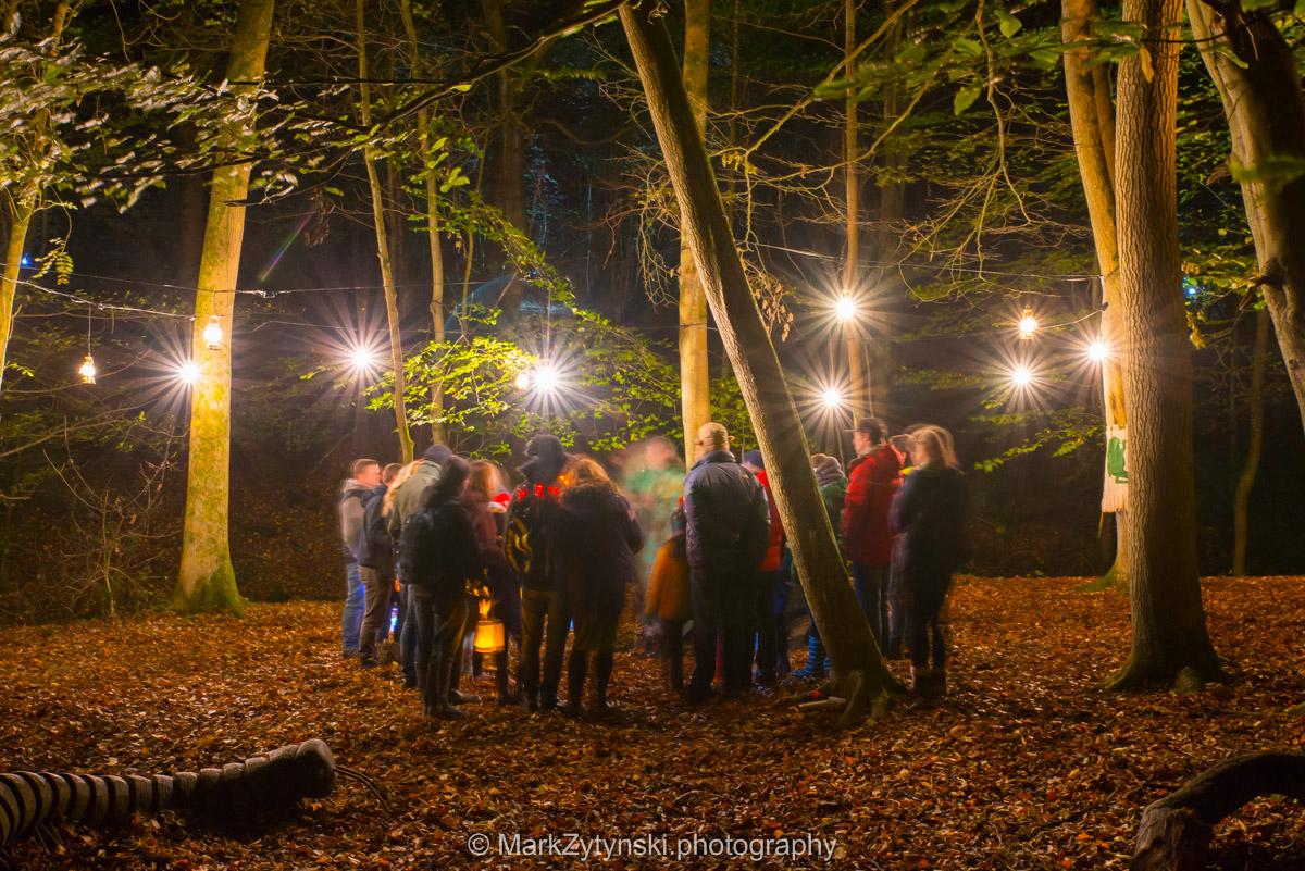 Trees-woodlands-8606.jpg