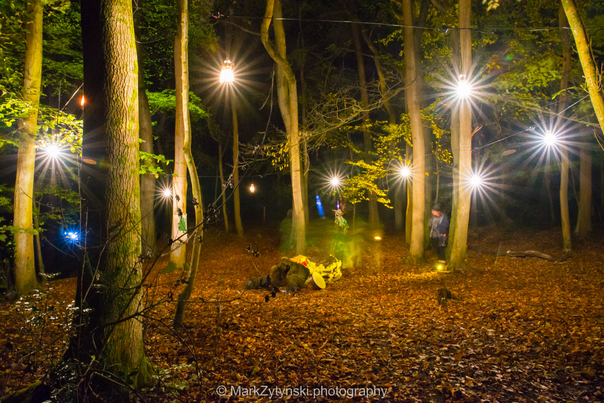 Trees-woodlands-8619.jpg