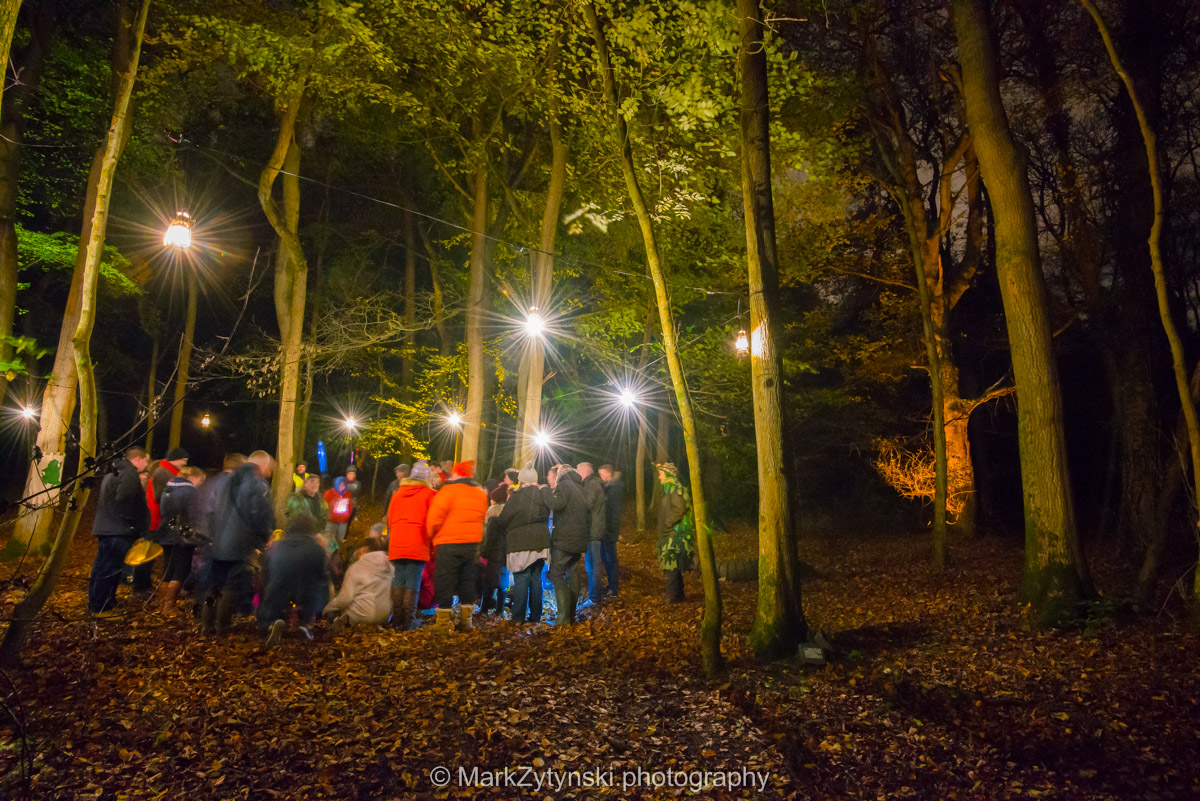 Trees-woodlands-8625.jpg