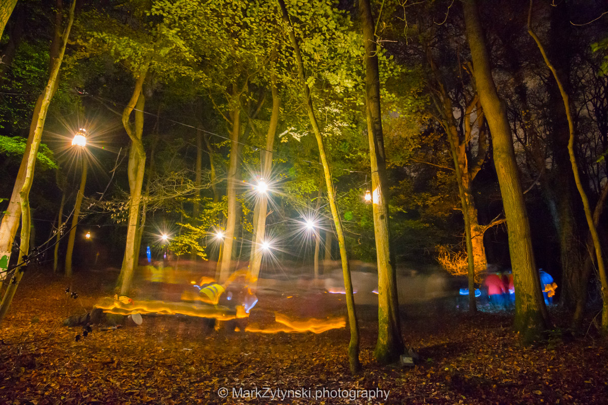 Trees-woodlands-8629.jpg
