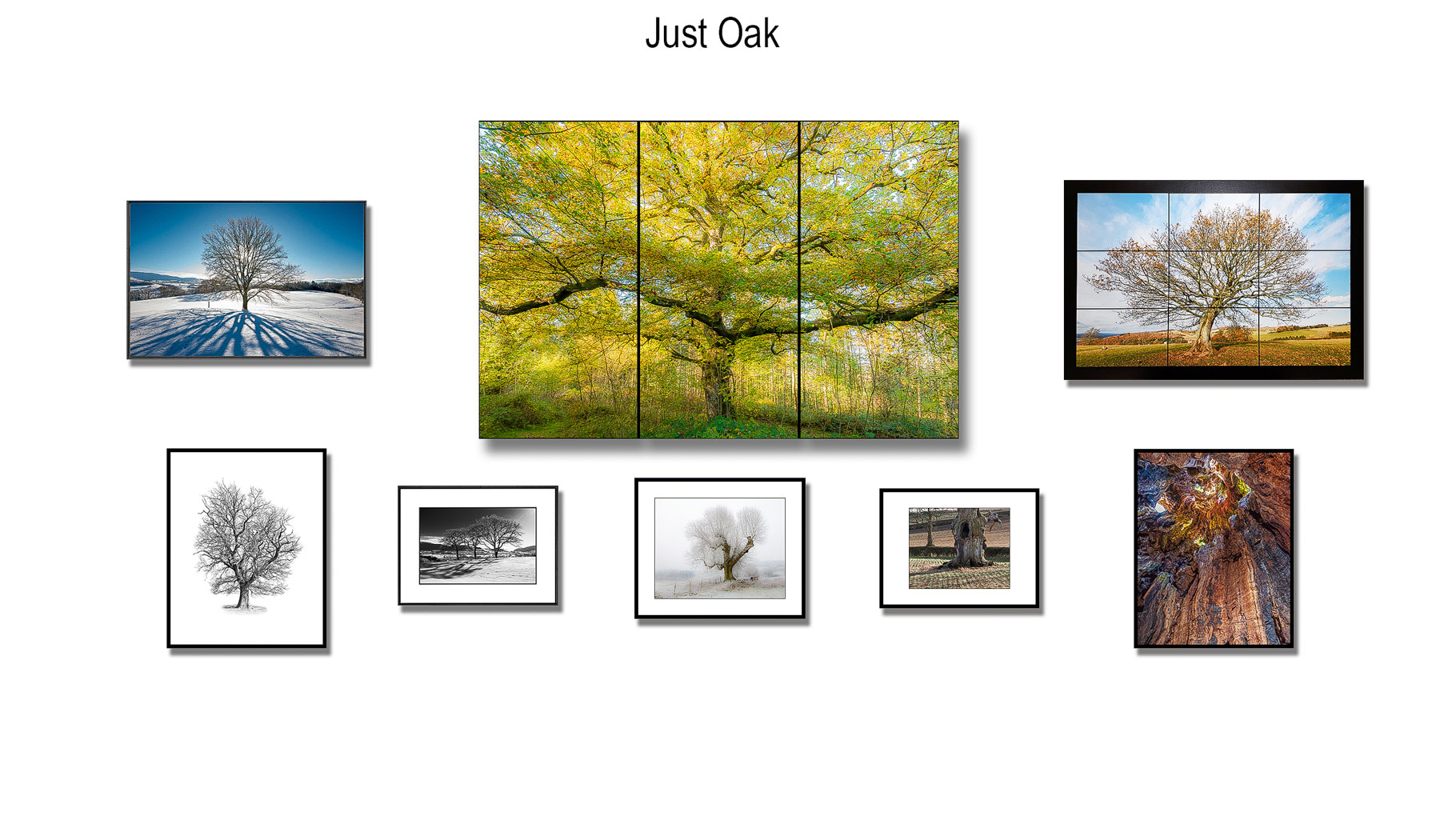 Zytynski-Just-Oak-photography-exhibition-8.jpg