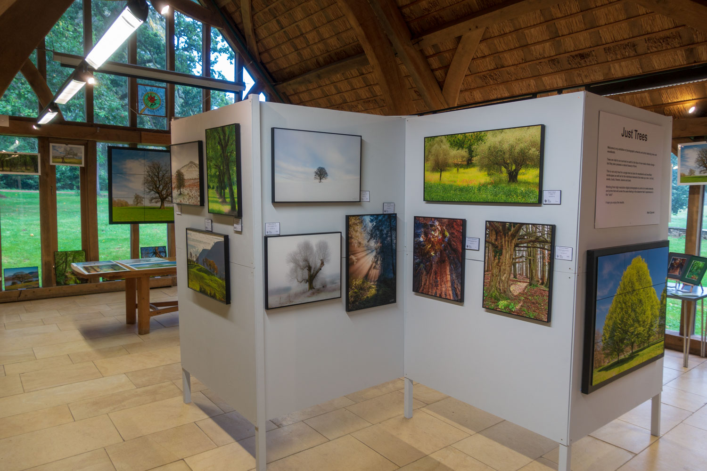 Westonbirt-exhibition-3.jpg