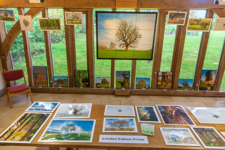 Westonbirt-exhibition-5.jpg