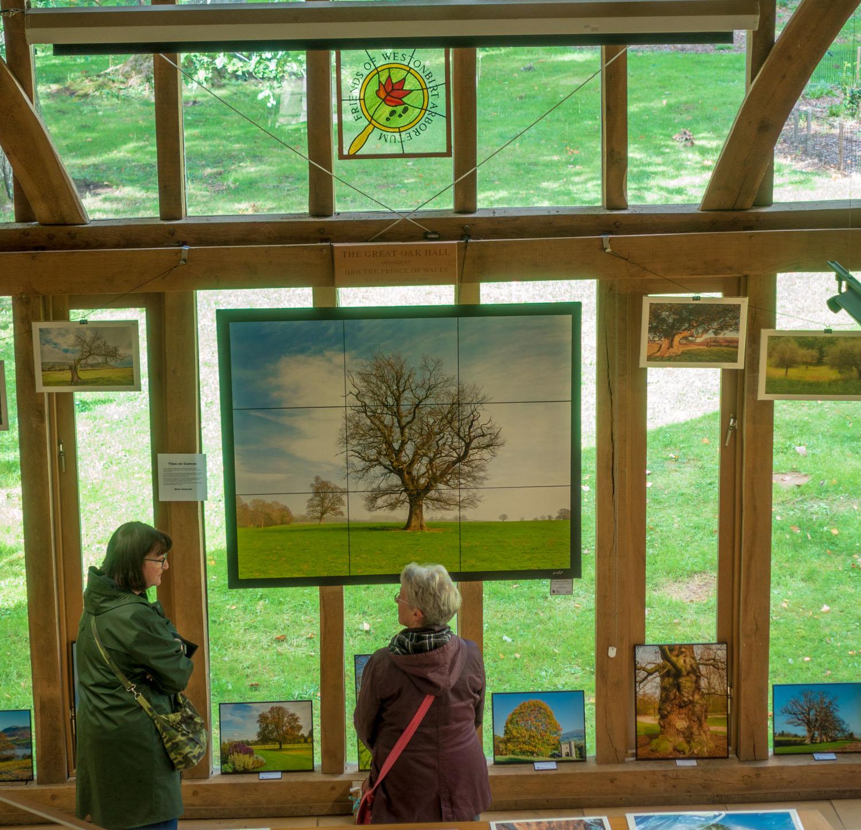 Westonbirt-exhibition-11.jpg