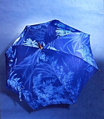 Tahiti_umbrella.jpg