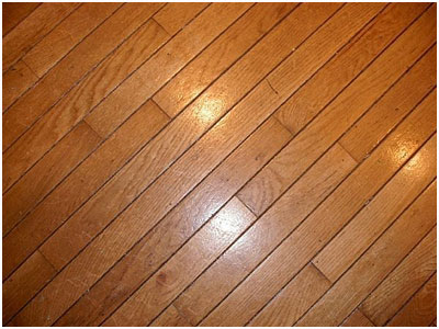 Shiney Hardwood Floor